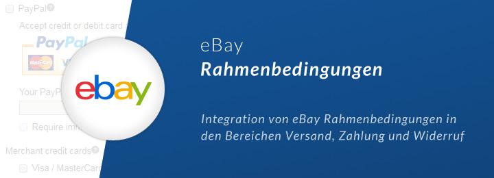 warenwirtschaft-blog-ebay-rahmenbedingungen